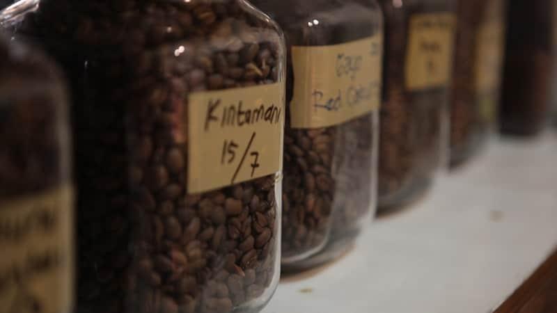 cara menyeduh kopi yang enak ala cafe - biji kopi