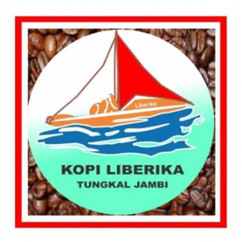 penghasil kopi indonesia - tungkal jambi
