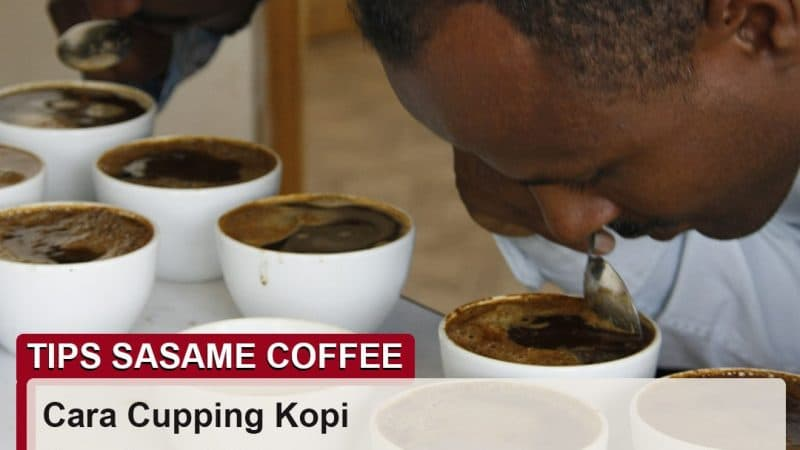 tips sasame coffee - cara cupping kopi