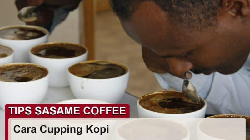 tips sasame coffee - cara cupping kopi